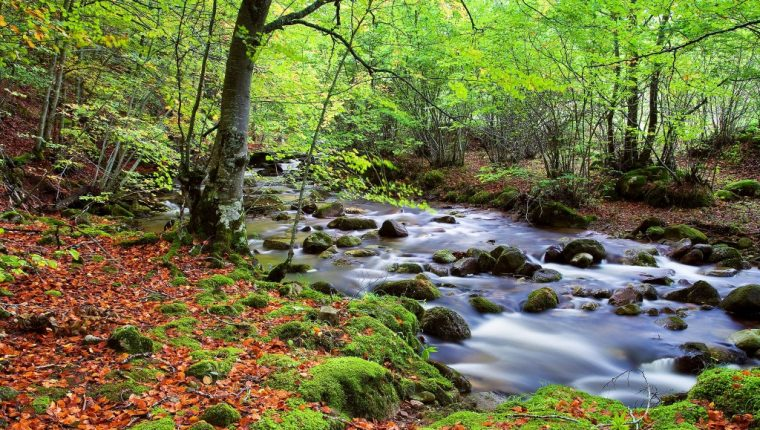 Senderismo y trekking Cantabria